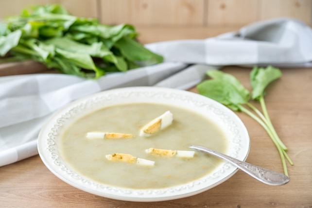 zupa szczawiowa (1)